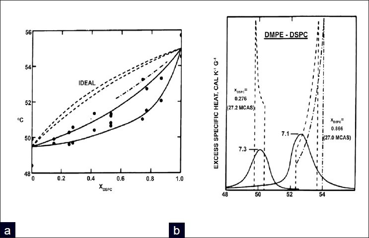 Figure 6 :a) A phase diagram showing the deviation from Ideal Mixing b) DSC thermogram of a DMPE DSPC mixture. Reprinted by permission from Proc. Natl. Acad. Sci. 73, S. Mabrey and J.M. Sturtevant (1976) Investigation of Phase Transitions of Lipids and Lipid Mixtures by High Sensitivity Differential Scanning Calorimetry 3862-3866 with permission from Proceedings of the National Academy of Science United States[191]