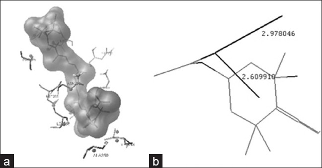 Figure 2: Virtual modeling of fucoxanthin bound with tubulin in colchicine site (a) and hydrogen bound of fucoxanthin with receptor (b)