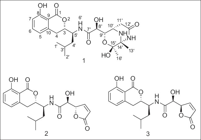 Figure 1: Structures of compounds 1-3 isolated from <i>Bacillus</i> sp