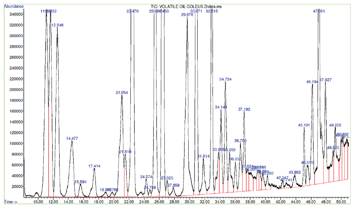 Figure 4: Gas chromatography-mass spectroscopy chromatogram of volatile oil of <i>Coleus forskohlii</i>