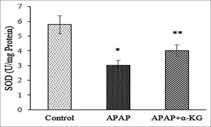 Figure 2: Effect of alpha-ketoglutarate on superoxide dismutase (50% inhibition of nitroblue tetrazolium reaction/min/mg protein) in acetaminophen-induced liver damage in rats. Mean ± standard deviation; <i>n</i> = 6, *<i>P</i> < 0.05, when compared to control, **<i>P</i> < 0.05, when compared to acetaminophen group