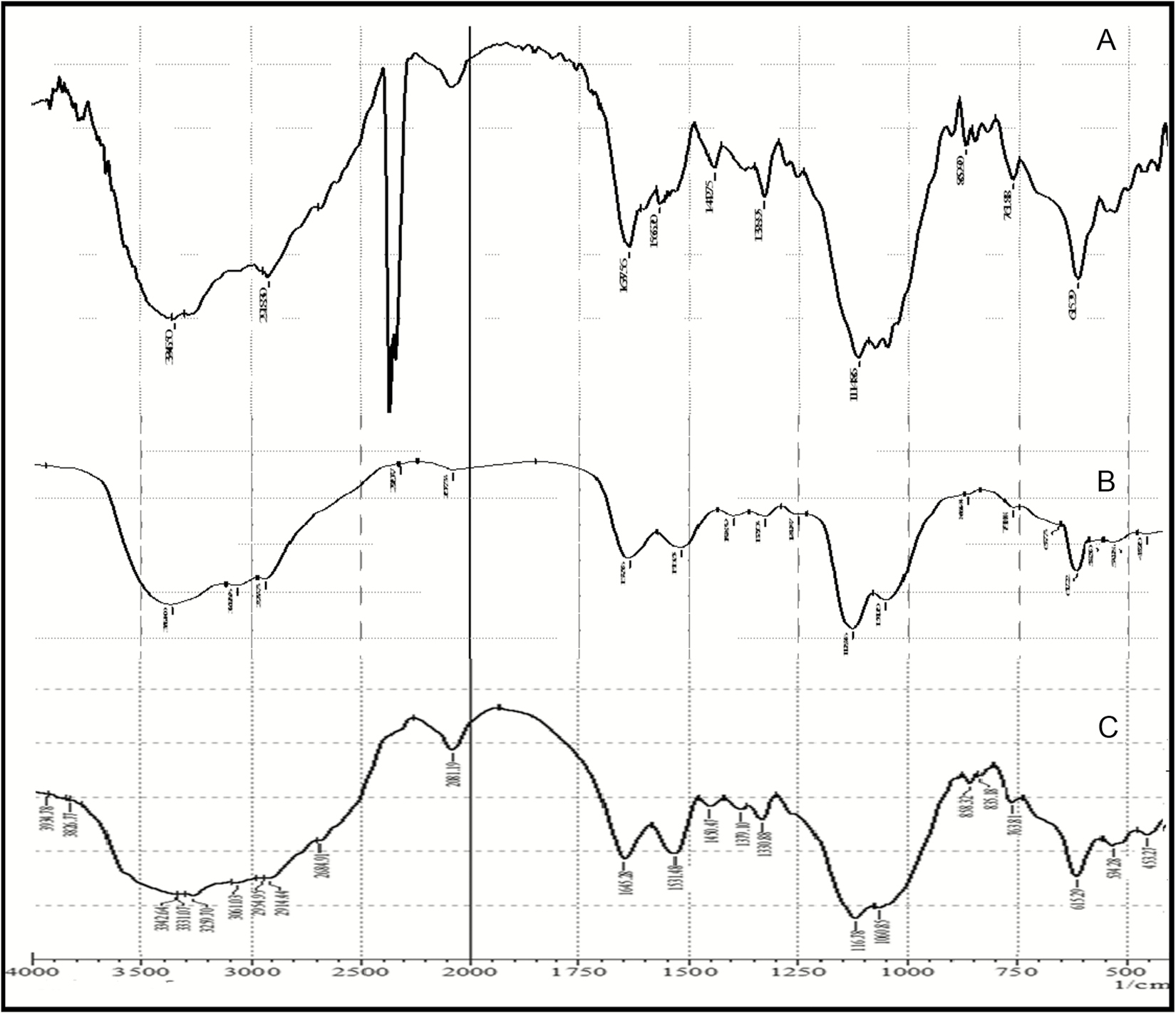Figure 3: Fourier transform infrared spectroscopy spectra of drug incubated and examined (A) at time 0, (B) at 37°C after 14 days, and (C) with 5% moisture at 37°C after 14 days<sup>[19]</sup>
