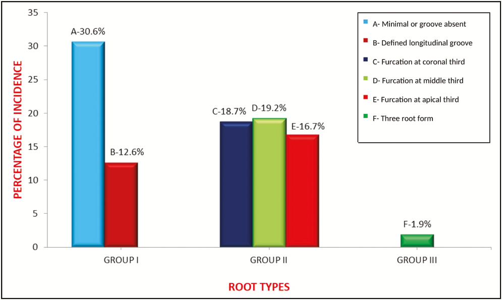 Figure 1: Root types distribution