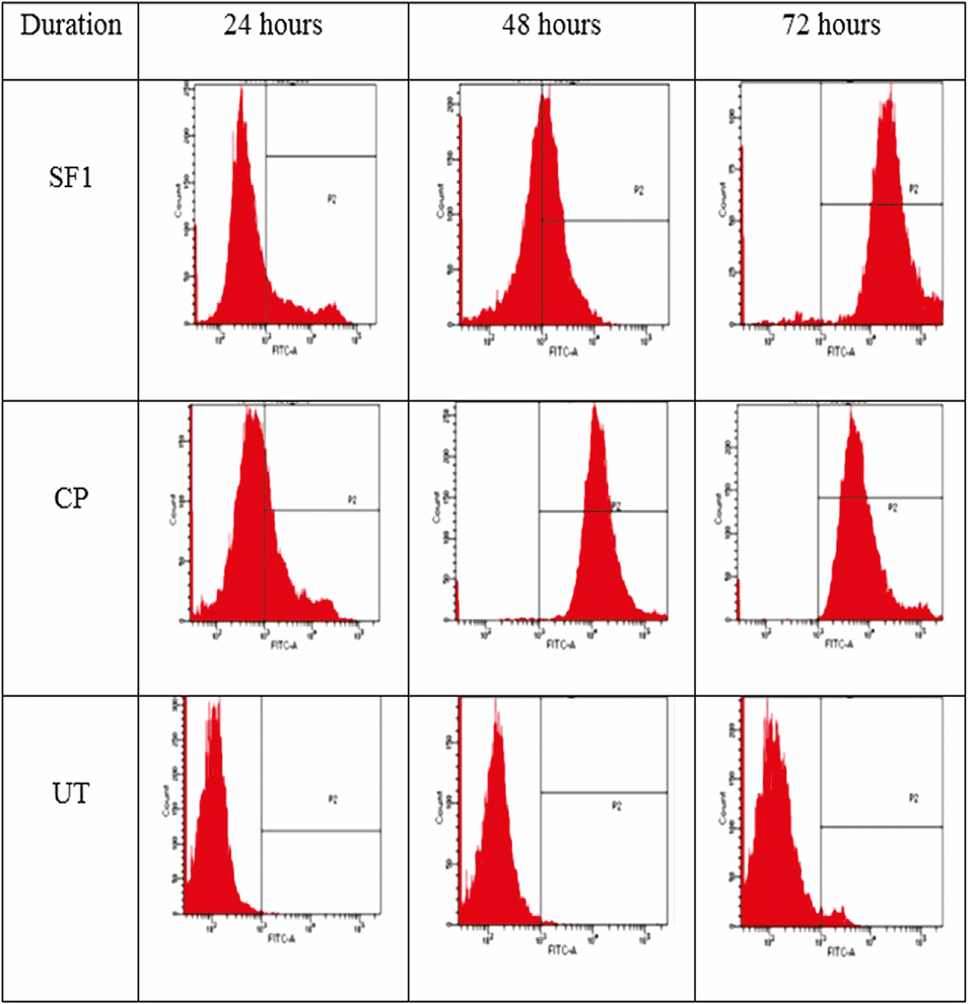 Figure 8: Histogram profile of p53 proteins expression detected by flow cytometry analysis in untreated SiHa cells (UT), standardized fraction-treated SiHa cells (SF1), and cisplatin-treated SiHa cells (CP) for 24, 48, and 72 h. Similar profile was observed in three independent experiments (<i>n</i> = 3)